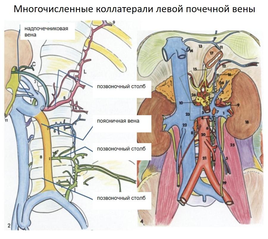 kolalterlaen-skizze-nkp-ru